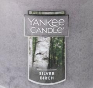 Crumble vosk Yankee Candle Silver Birch USA 22 g