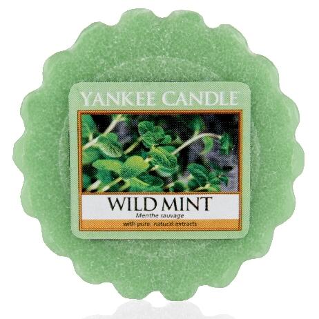 Vonný vosk Yankee Candle Wild Mint 22g