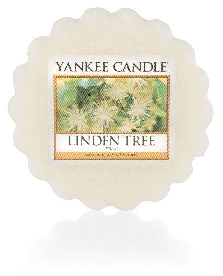 Vonný vosk Yankee Candle Linden Tree 22g