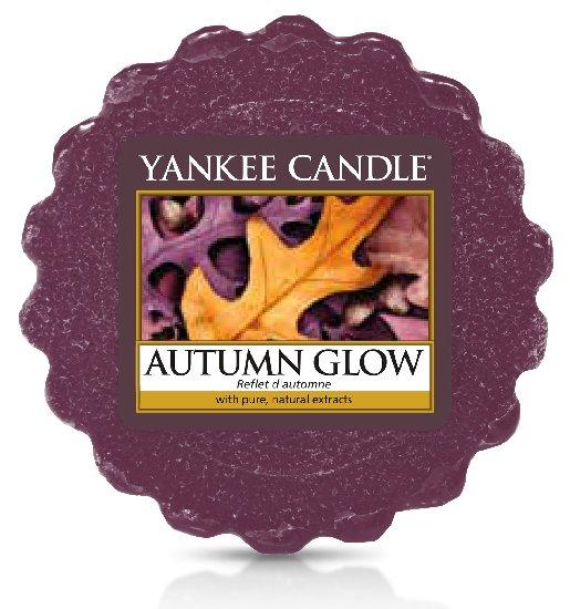 Vonný vosk Yankee Candle Autumn Glow 22g